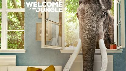welcome_to_the_jungle
