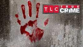 true_crime_landscape