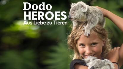 dodo_heroes